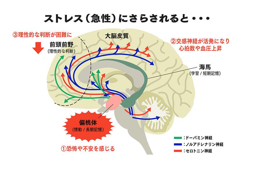 210615_mindacademia_01.jpg